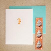 seahorse_4238