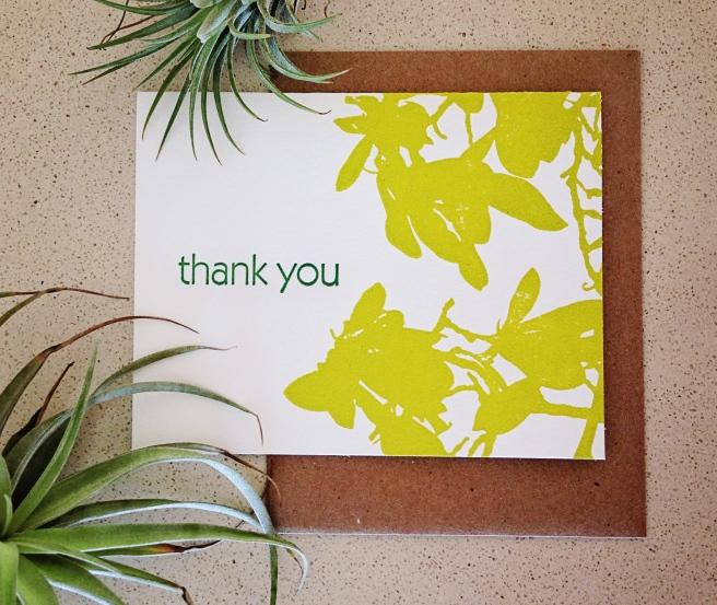 magnolia_thankyou_6352