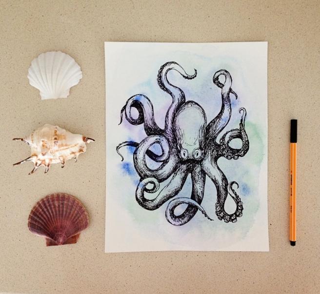 octopus_0696