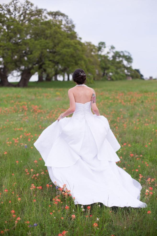 View More: http://kaylinanortonphotography.pass.us/texaswildflowers