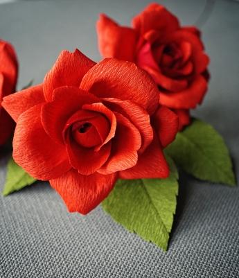 tea_rose_red_0274