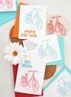 bikes_driftless_4952
